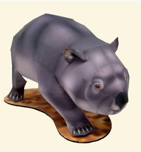 Wombat - Oceania