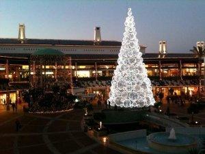 Christmas tree Algarve