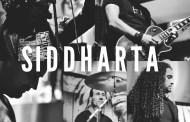 Entrevista a SIDDHARTA (Fernando Pleite)