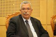 البحيري بالتعاون مع أردوغان متهمان بالمس بالسياسة الخارجية للبلاد التونسية
