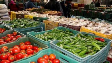 Photo of إعادة عمل أسواق الجملة بما في ذلك أسواق الأسماك بكامل تراب الجمهورية