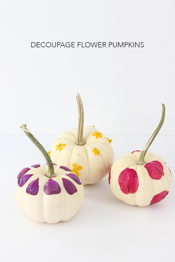 Decoupage foraged flower pumpkins on alice & lois