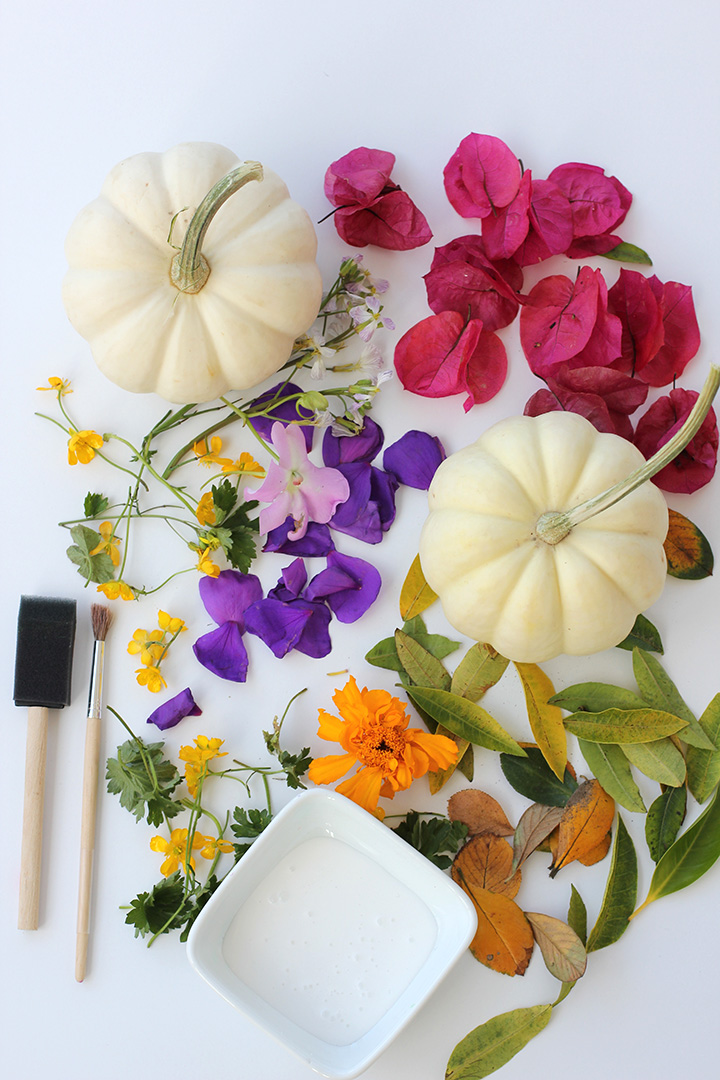 Decoupage Foraged Flower Pumpkins | alice & lois