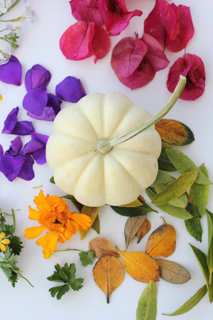 Use any flowers you'd like with these DIY Decoupage Floral Pumpkins