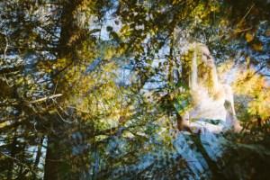 Alice-in-Wonderland-6385