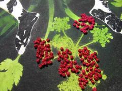 gravure-immersion-végétale-alice-heit9