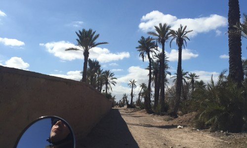 marrakech by vintage sidecar insiders experiences alice morrison alice outthere