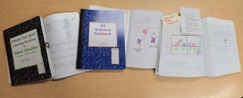 interactive_notebooks