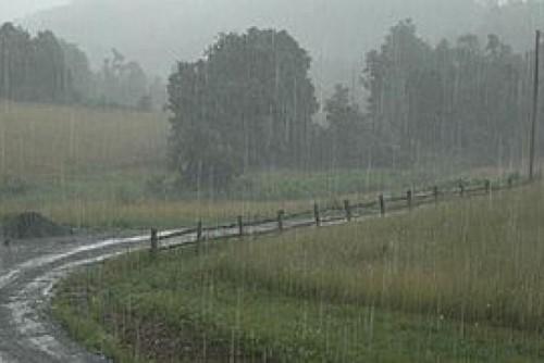 rainfarm