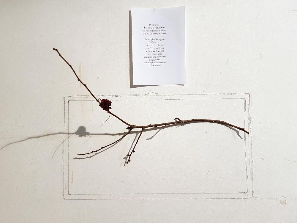 """Elvezia Allari: da """"Sfalci e ramaglie"""", Pettirosso, 2018"""