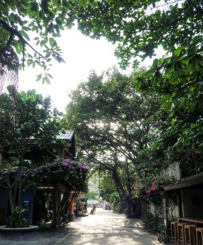 Ao-thong-2