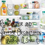 Refrigerator and Freezer Organization