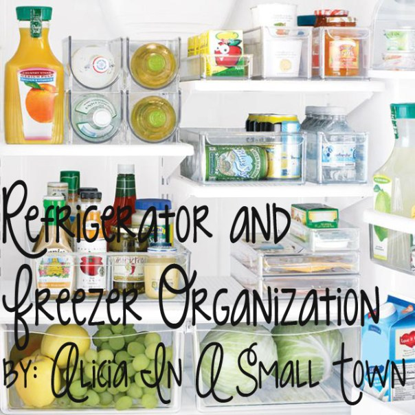 Refrigerator-and-Freezer-Organization-Ideas copy
