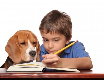 kid-homework dog preparing kids for school
