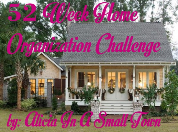 52 Week Home Organization Challenge 2016
