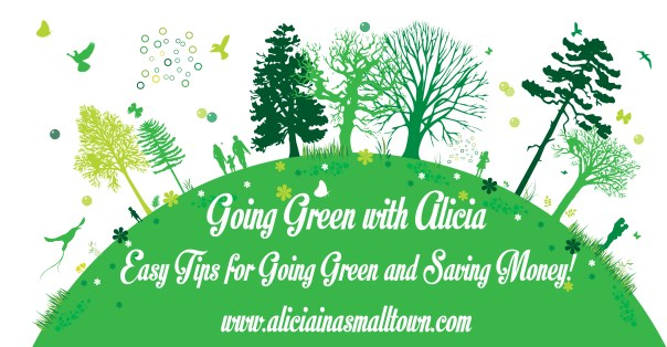 Going Green with Alicia - Easy tips to go green and save money