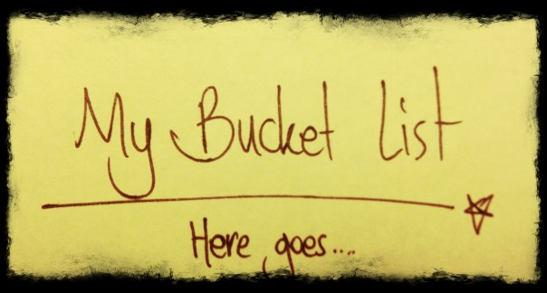 my 2016 bucket list