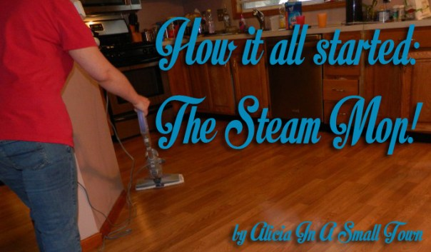 It all started with a steam mop copy