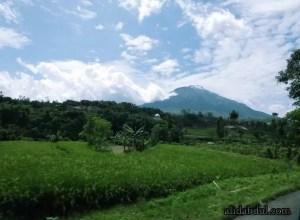 Gunung Sindoro Sumbing