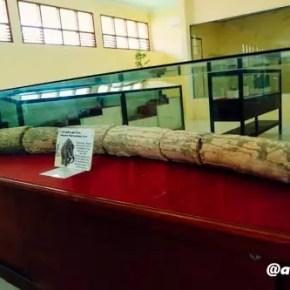 Museum Trinil Alid 4