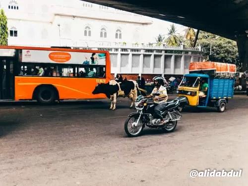 Bangalore dalam Sehari-7