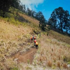 Pendakian ke Ranu Kumbolo 18