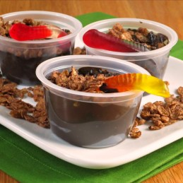 Cocoa Pebbles Dirt Pudding {alidaskitchen.com}