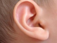 Ear pediatric