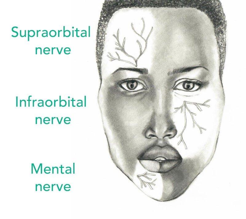 Pem Pearls Regional Facial Nerve Blocks