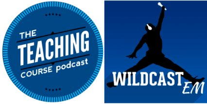 teaching course - wildcast EM logo