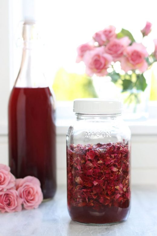 Jar full of rose petals infusing the rose petal vinegar