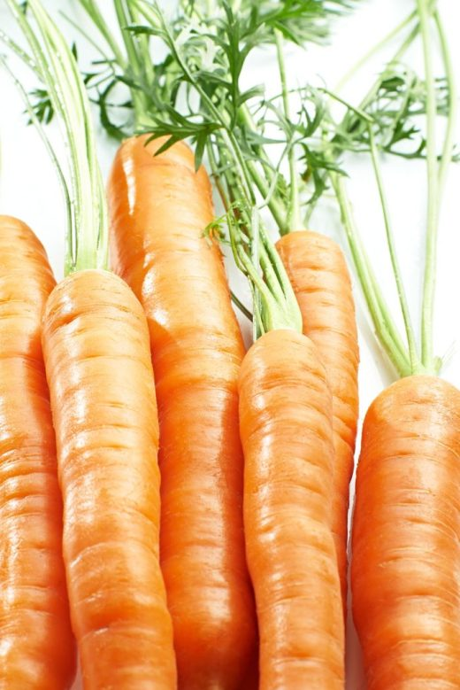 Raw carrots are anti-inflammatory. They lower estrogen, endotoxin, and cortisol, leading to improved hormone balance. Raw carrots, Dr. Ray Peat, Ray Peat, Carrot Salad, Endotoxin, Endotoxins, Lipopolysaccharide, LPS, Lipopolysaccharides, Estrogen, Inflammation, Progesterone. Photo © Maja
