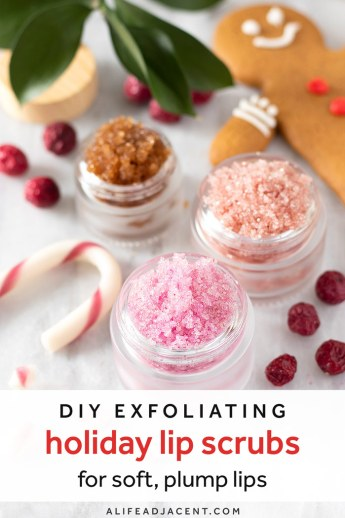 DIY holiday lip scrubs: gingerbread, cranberry and candy cane