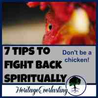 Spiritual encouragement | Christian Living | Spiritual warfare | 7 tips to fight back spiritually. Don't be a chicken. Learn what it takes to be a spiritual force so you aren't knocked down again and again.