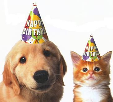 Image result for happy birthday dogs and cats