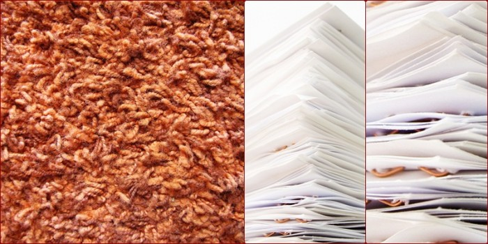 crusty rust colored shag carlet and paper piles