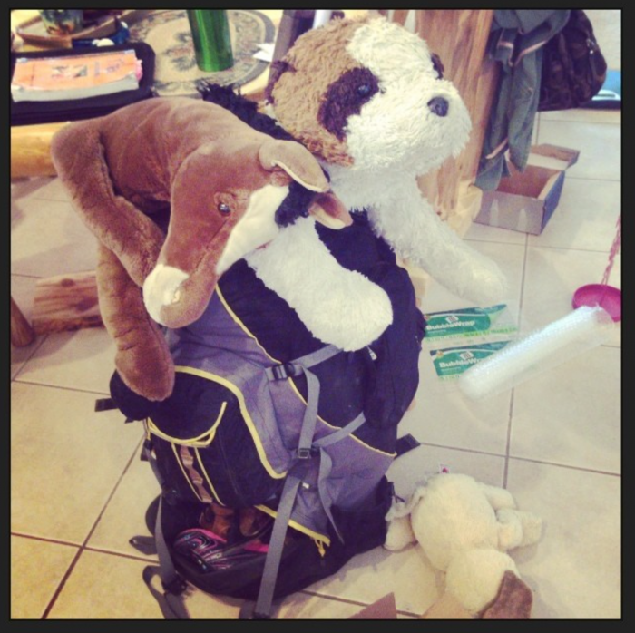 These are the freakishly huge stuffed animals that we've paid to fly around the world and back again TWICE now.