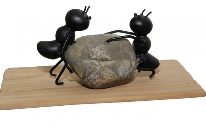 ants-1169349_960_720a