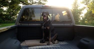 Ralph in Truck
