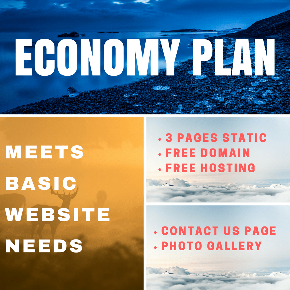 Website Design Economy Plan