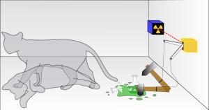 schrödinger'in kedisi deneyi Düşünce Deneyleri Düşünce Deneyleri Schrodingers kedisi 300x159