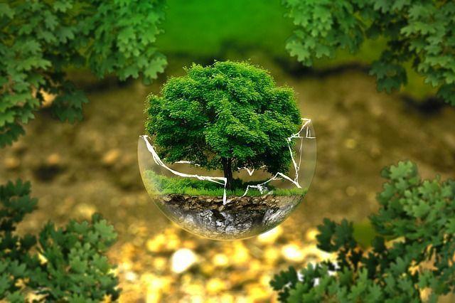 envases sostenibles medioambiente