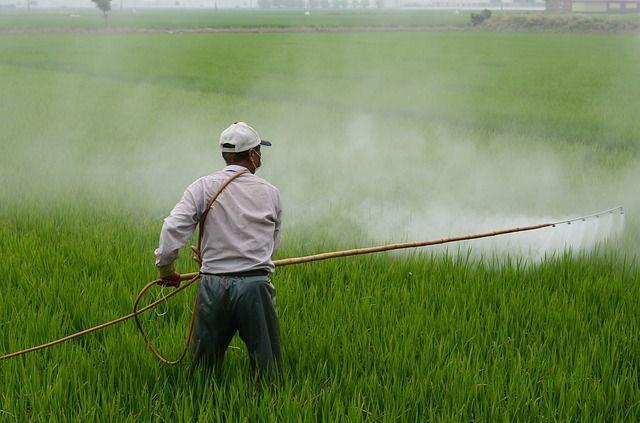 agricultura orgánica pesticidas
