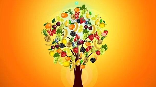 NutrInform Battery: la proposta dell'Italia per le dichiarazioni nutrizionali.