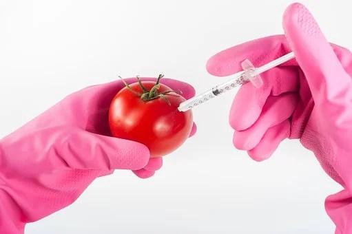 OGM e tecniche di mutagenesi: vediamo la sent. 15.07.2018 della Corte di Giustizia UE