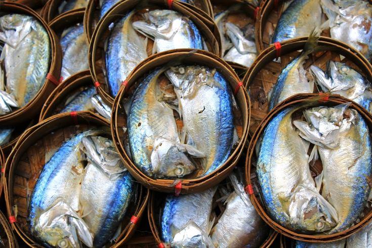 Beneficios para la salud del pescado azul