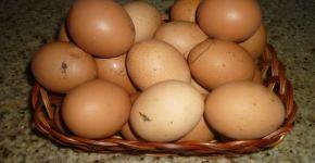 Los huevos, naturales y nutritivos