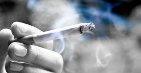 Alimentos para el fumador