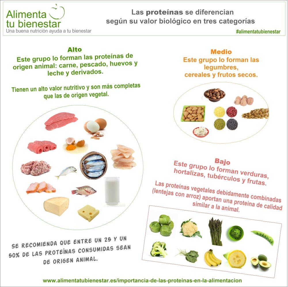 La importancia de las prote nas en la alimentaci n - Alimentos ricos en proteinas pdf ...