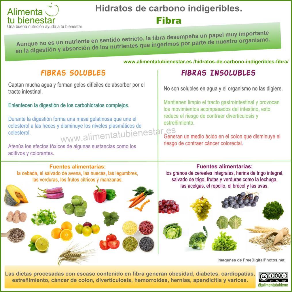 Infografía Hidratos de carbono indigeribles: la fibra